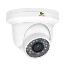 1.0Мп IP видеокамера Partizan IPD-1SP-IR SE 1.1